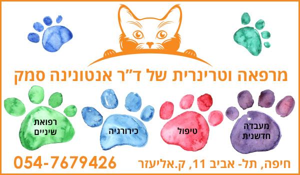 מרפאה וטרינרית בחיפה של דוקטור אנטונינה סמק. וטרינרים בחיפה. רופא וטרינר. מספרה לכלבים ולחתולים בחיפה.