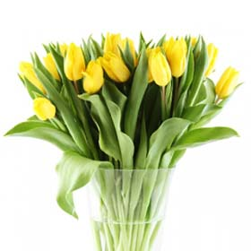 חנות פרחים בראשון לציון - דולי פלוורס. משלוחי פרחים במרכז הארץ. קישוט רכב לחתונה בראשון לציון.