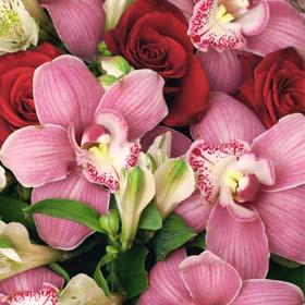משלוחי פרחים בתל אביב, חנות פרחים בתל אביב, חנות פרחים במרכז, חנות פרחים 24 שעות בתל אביב,להזמין פרחים בתל אביב.